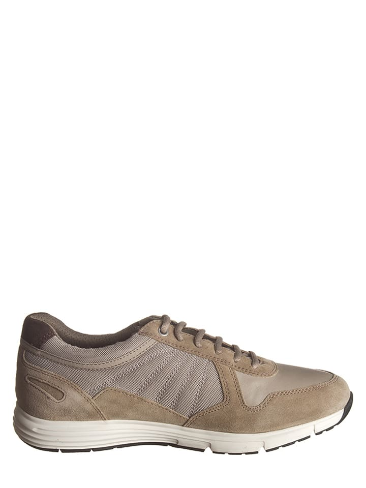 "Geox Sneakers ""Dynamic"" in Sand"