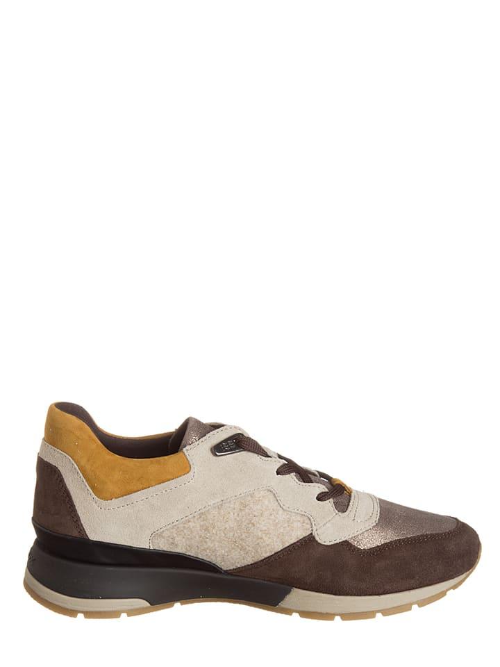 "Geox Sneakers ""Shahira"" in Braun/ Beige"