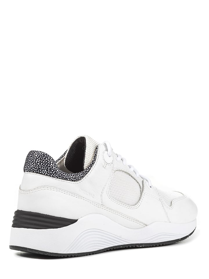 """Geox Leder-Sneakers """"Omaya"""" in Wei"""