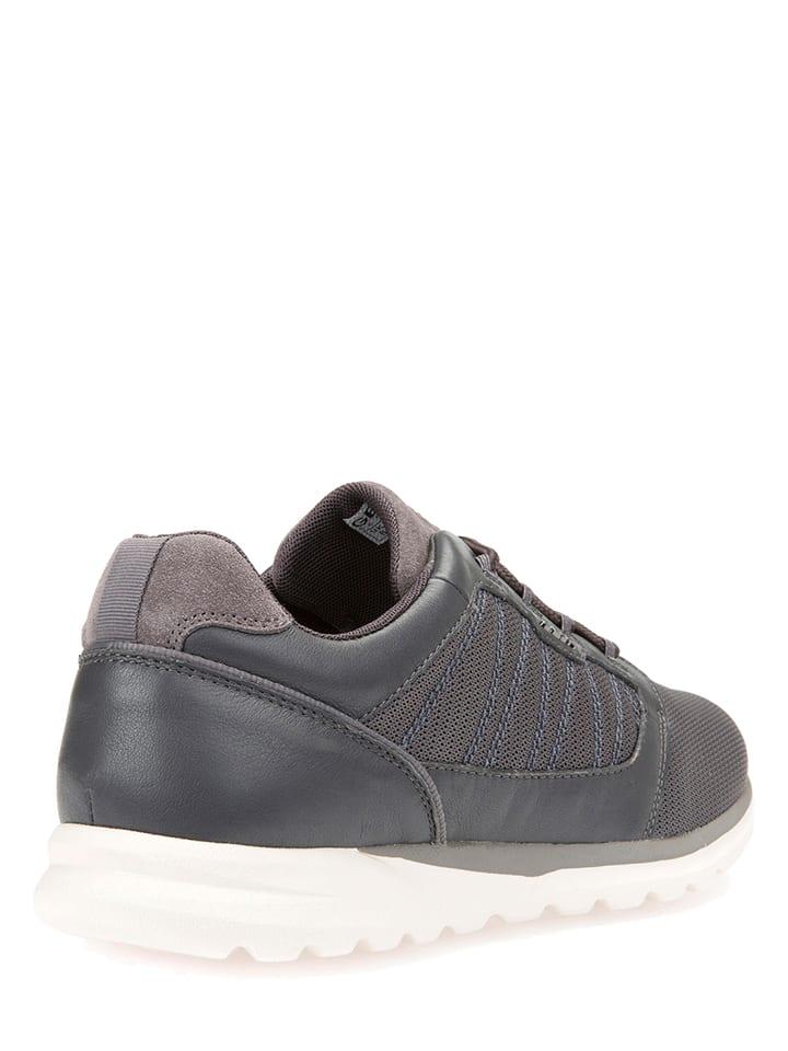 """Geox Leder-Sneakers """"Damian"""" in Grau"""