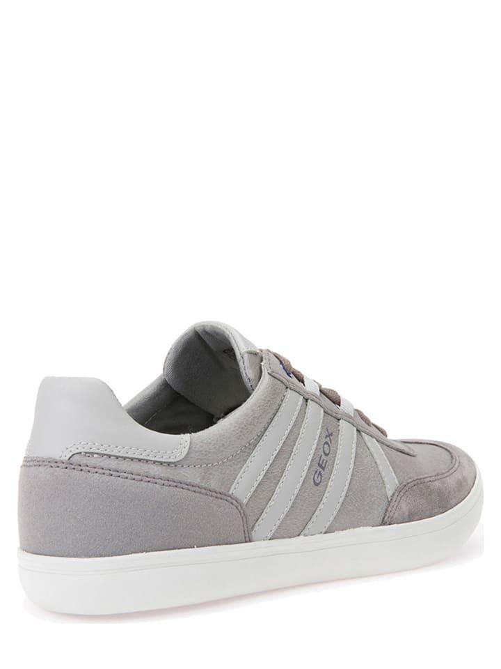 """Geox Leder-Sneakers """"Halver"""" in Grau"""