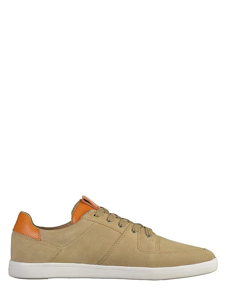 """Boxfresh Leder-Sneakers """"Cladd"""" in Beige"""