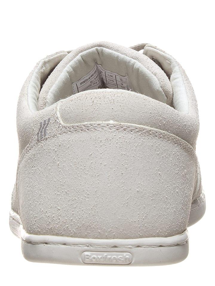 "Boxfresh Leder-Sneakers ""Spencer"" in Creme"