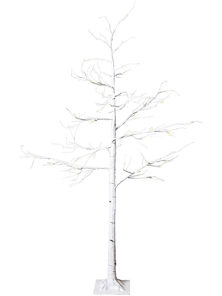 """Best Season Drzewko dekoracyjne LED """"Tobby Tree"""" w kolorze białym - 50 x 150 cm"""