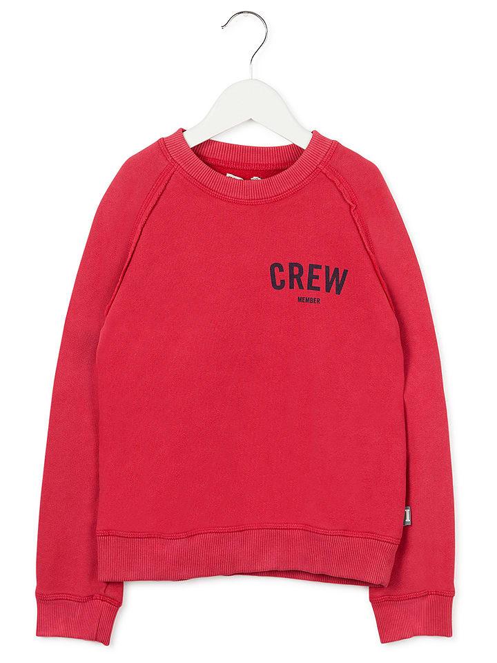 Imps & Elfs Bluza w kolorze czerwonym