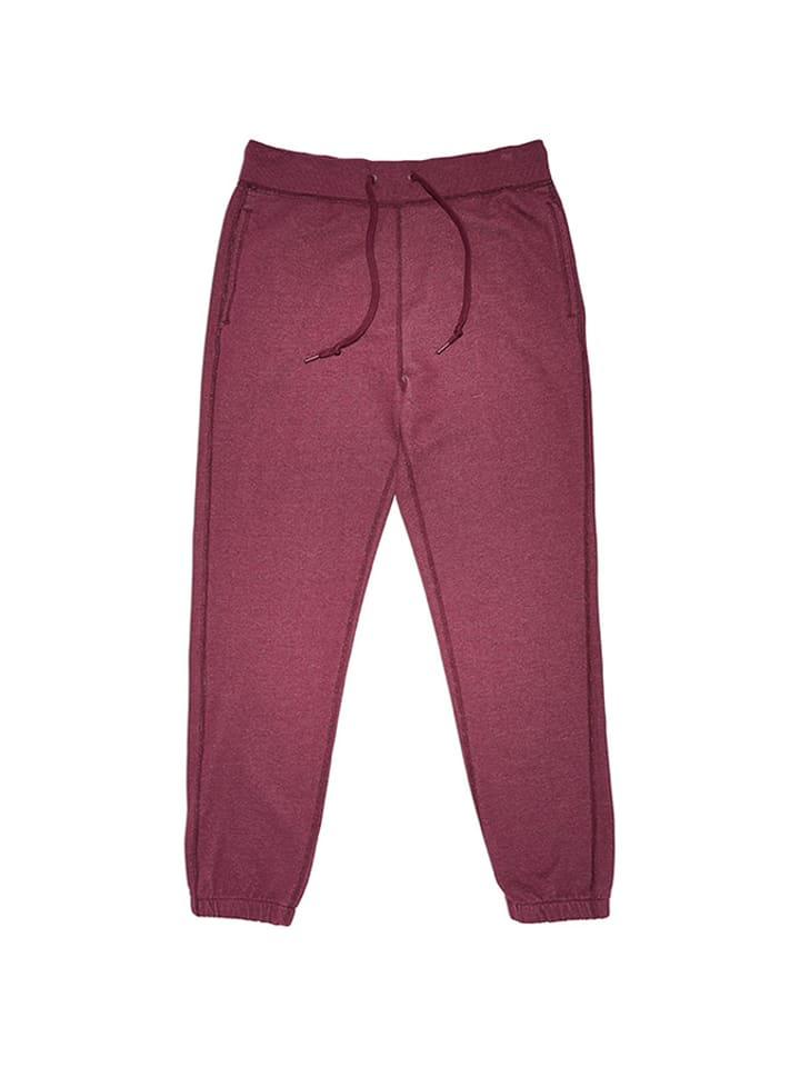 Converse Spodnie w kolorze bordowym