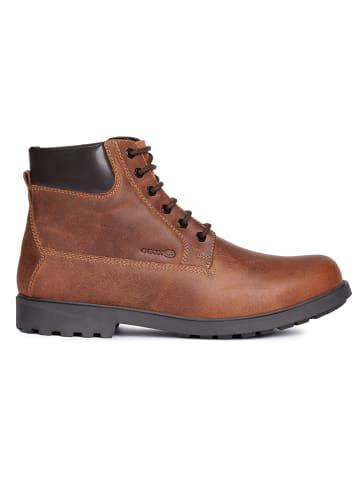 Ermäßigung Preis Geox Herrenschuhe Schuhe