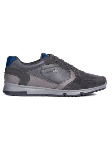 Geox Sneaker Low im Outlet SALE günstig bis 80%