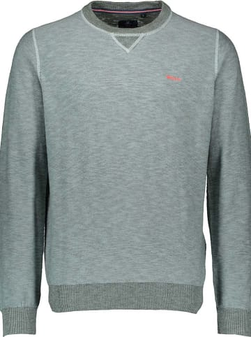 NEW ZEALAND AUCKLAND Pullover & Strick im Outlet SALE