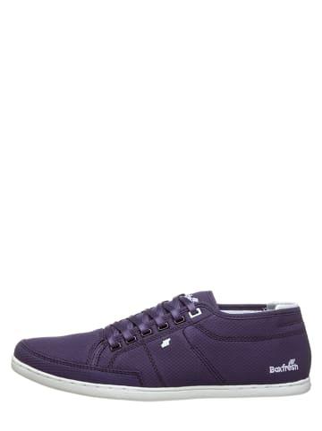 "Boxfresh Sneakers ""Sparko"" in Dunkelblau"