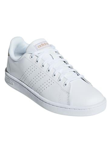 "Adidas Leder-Sneakers ""Advantage"" in Weiß"