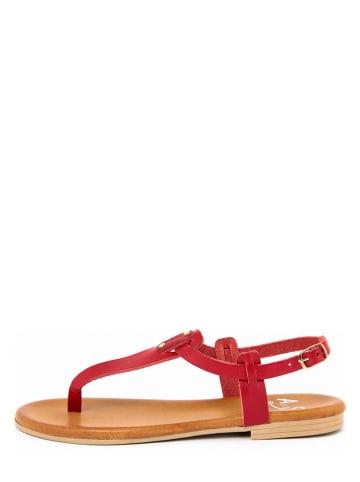 ALISSA Skórzane japonki w kolorze czerwonym