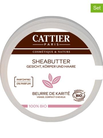 CATTIER 6er-Set: Sheabutter, je 20 g