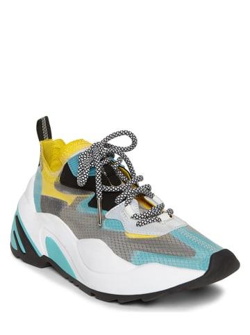 """Steve Madden Sneakers """"Charged"""" meerkleurig"""