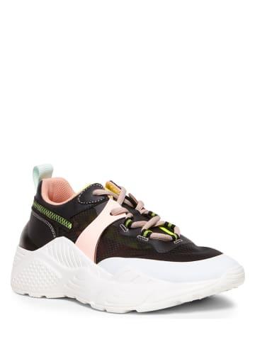 "Steve Madden Sneakers ""Aris"" zwart"