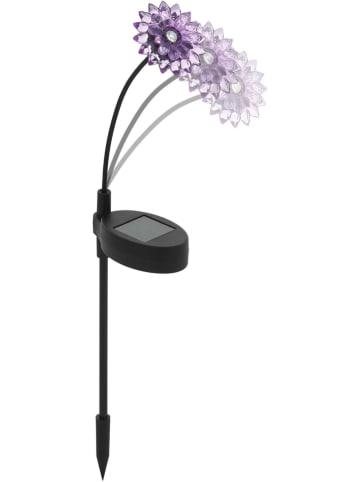 EGLO Solarna lampa ogrodowa LED w kolorze czarno-fioletowym - wys. 34 cm