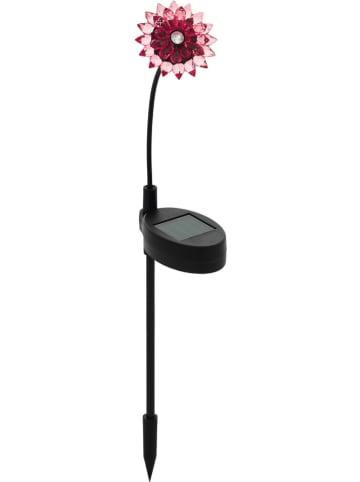 """EGLO Ledsolartuinsteker """"Bloem"""" zwart/rood - (H)34 cm"""