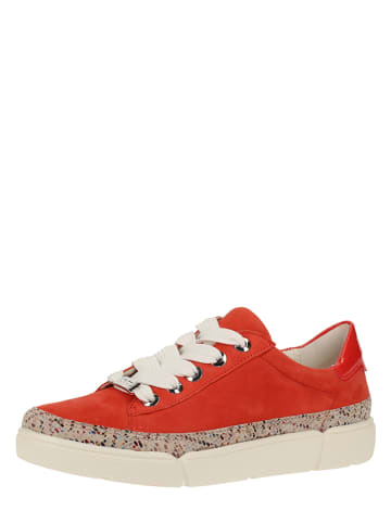 Ara Shoes Leder-Sneakers in Rot