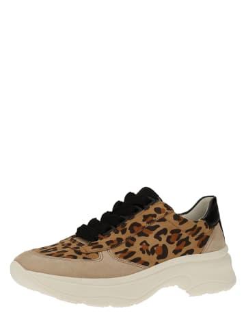 Ara Shoes Leder-Sneakers in Braun