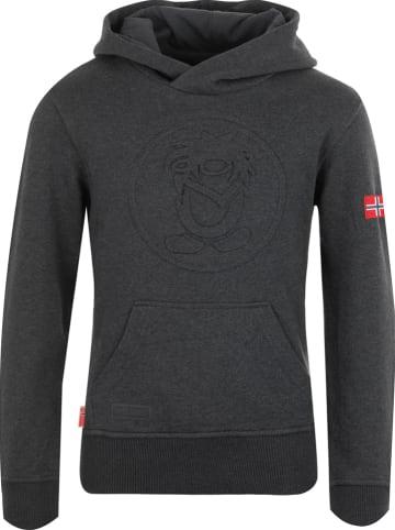 "Trollkids Sweatshirt ""Kristiansand"" grijs"