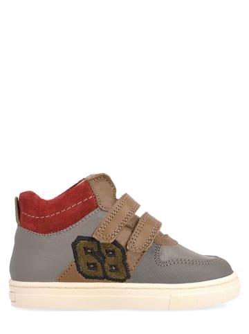 Garvalin Leren sneakers grijs