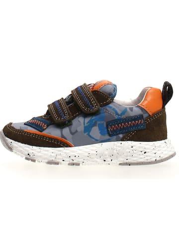 "Naturino Sneakers ""Delf"" in Blau/ Braun"