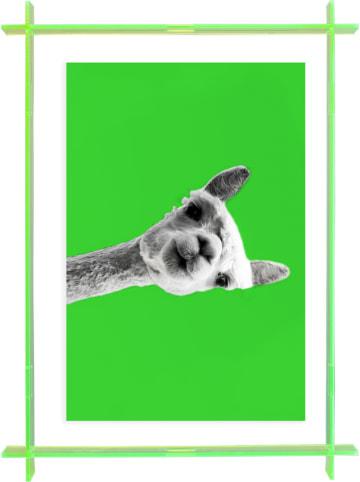 """Madre Selva Kids Druk artystyczny """"Camel"""" w ramce - 22 x 30 cm"""