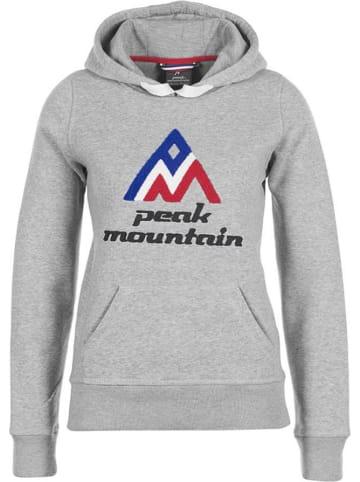 Peak Mountain Sweatshirt in Grau
