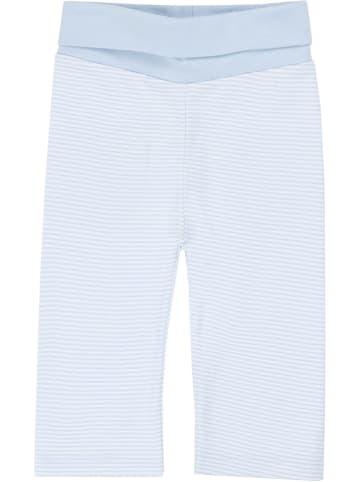 Steiff Sweathose in Hellblau/ Weiß
