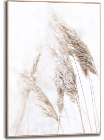 """Orangewallz Ingelijste kunstdruk """"Nature Grass"""" - (B)50 x (H)70 cm"""