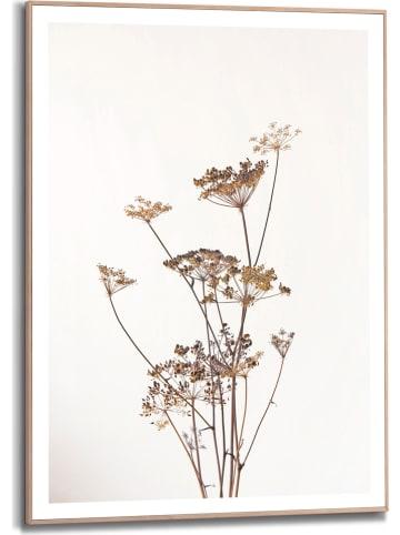 "Orangewallz Ingelijste kunstdruk ""Dried Flowers"" - (B)50 x (H)70 cm"