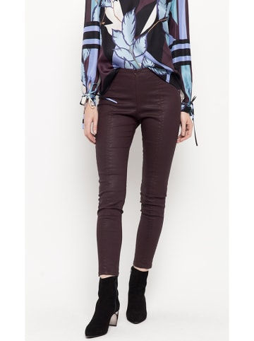 Deni Cler Spodnie w kolorze bordowym
