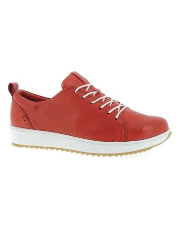 Andrea Conti Skórzane sneakersy w kolorze czerwonym