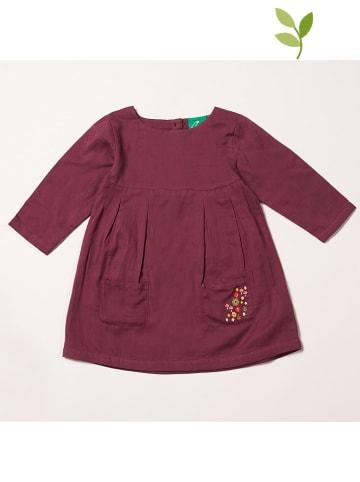 Little Green Radicals Sukienka w kolorze fioletowym