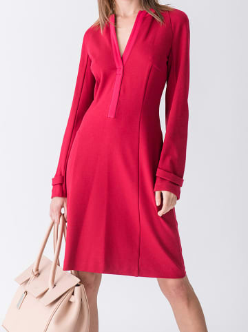 Strenesse Sukienka w kolorze jagodowym