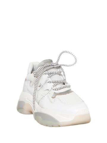 Patrizia Pepe Sneakers in Weiß/ Grau