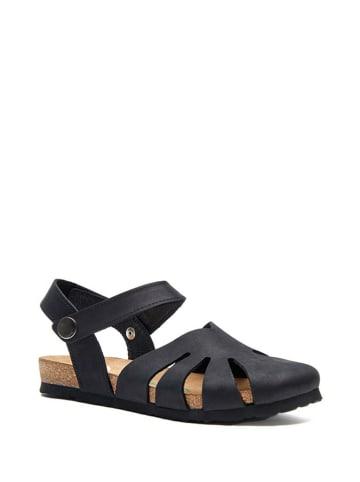 Comfortfusse Skórzane sandały w kolorze czarnym