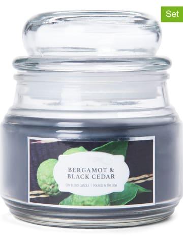 "Colonial Candle 2-delige set: geurkaarsen ""Bergamot & Black Cedar"" donkerblauw - 2x 255 g"