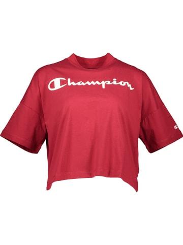 Champion Shirt bordeaux