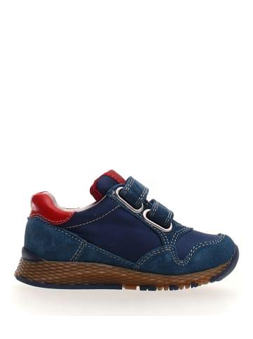 """Naturino Sneakers """"Sammy"""" donkerblauw"""