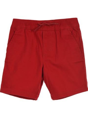 Levi's Kids Szorty chino w kolorze czerwonym