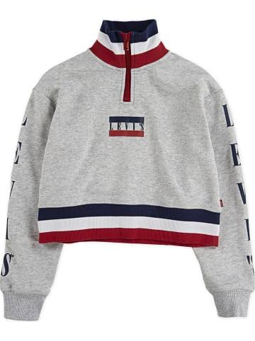 Levi's Kids Sweatshirt grijs