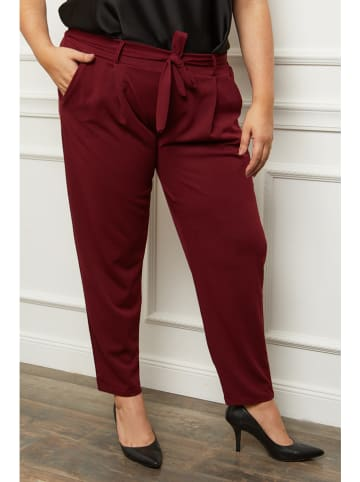 Curvy Lady Broek bordeaux