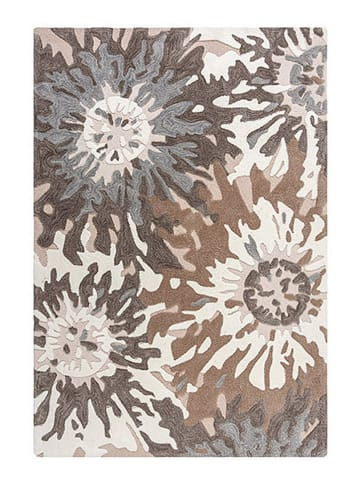 Flair Rugs Teppich in Bunt