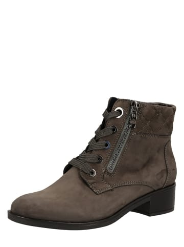 Ara Shoes Leder-Stiefeletten in Taupe