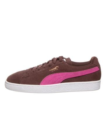 """Puma Shoes Leder-Sneakers """"Suede Classic"""" in Braun"""