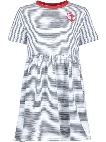 Lamino Sukienka w kolorze niebiesko-białym