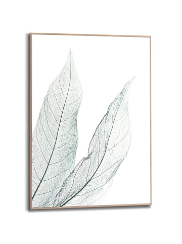 "Orangewallz Ingelijste kunstdruk ""Pure Leaf"" - (B)50 x (H)70 cm"