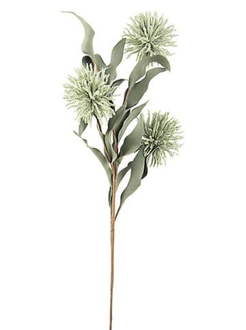 Bizzotto Sztuczny kwiat w kolorze zielonym - (W)70 cm