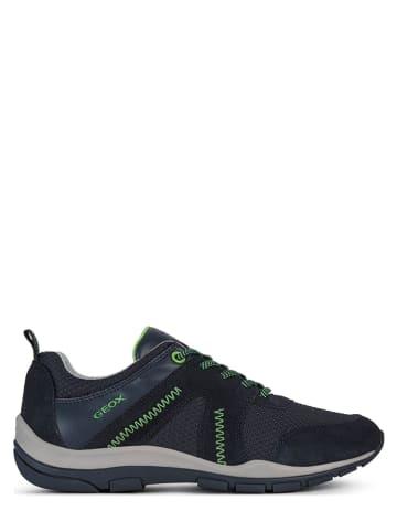 """Geox Leder-Sneakers """"Kander"""" in Dunkelblau"""